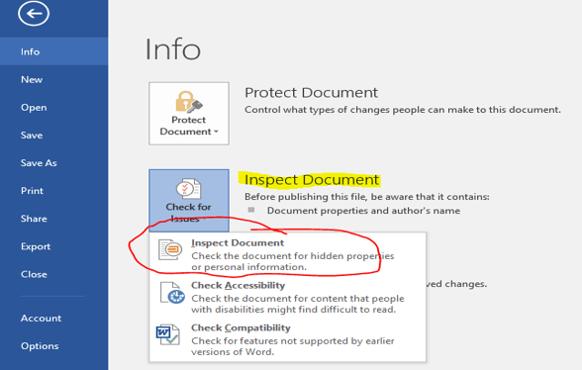 Emily Arnold MS Power User Blog image 6-Inspect Document