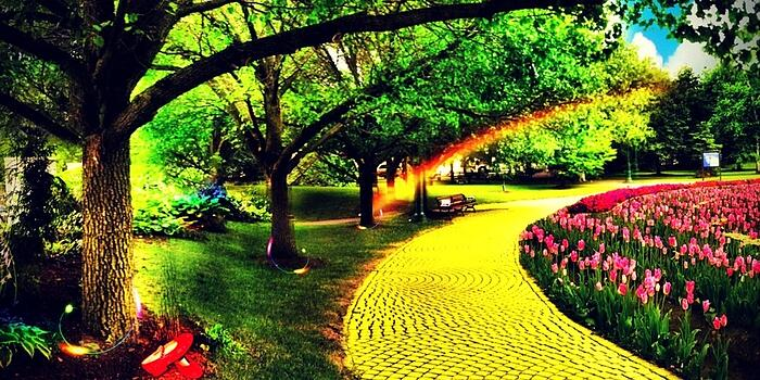 Follow the Yellow Brick Road_Why Compliant Proposals are so Hard